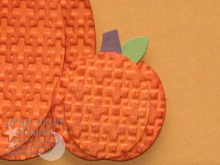 Textured Pumpkins Closeup