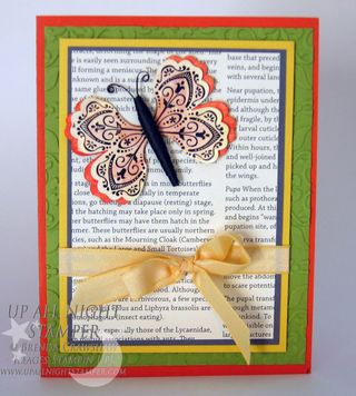 Mixed Bunch Butterfly Card