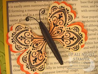 Butterfly Card Closeup