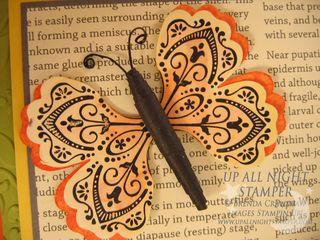 Butterfly Card Closeup